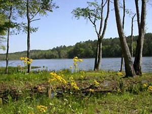 Paul M. Grist State Park