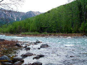 Kijik River - Lake Clark National Park
