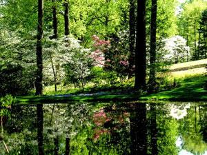 Delaware scenic beauty