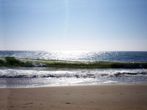 Delaware Seashore State Park