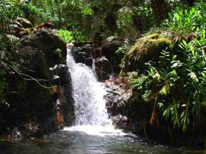 Hakalaoa Falls