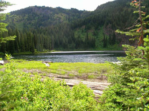 Lake Elsie