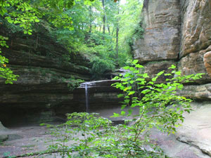 Starved Rock State Park - Lasalle Canyon