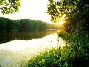 Clark State Forest Schlamm Lake