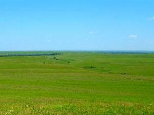 Tall Grass Prairie National Preserve