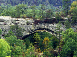 Daniel Boone National Forest - natural arch