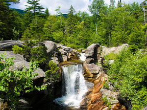 Grofton Notch State Park - Screw Auger Falls