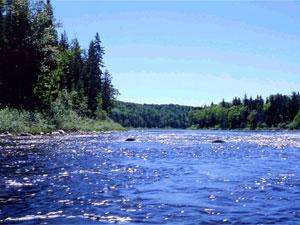 Penabscot River