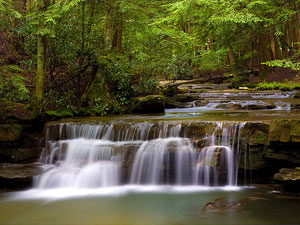 Swallow Falls State Park - Tolliver Falls