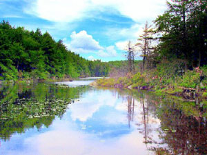 Mount Everett Guilder Pond