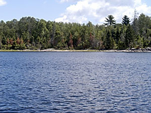 Rainy Lake State Park