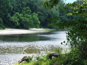 Lafleurs Bluff State Park