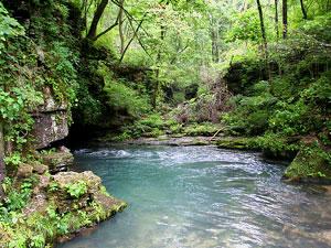 Greer Spring - Eleven Point River