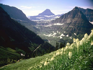 Glacier National Park - Mount Reynolds