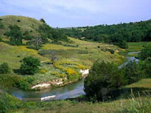 Dismal River - Sand Hills