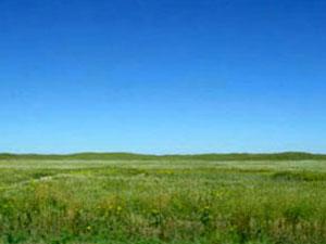 Sand Hills prairie