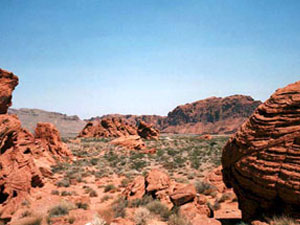 Valley Of Fire State Park - petrified sand dunes