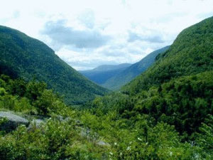 Crawford Notch - White Mountain National Forest