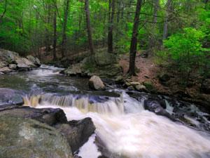 Hacklebarney State Park - Black River