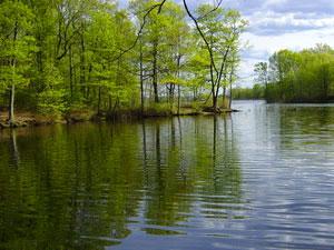Acme Pond - Staten Island