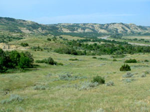 Dakota Prairie Grasslands
