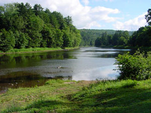 Clarion River - Cook Forest State Park