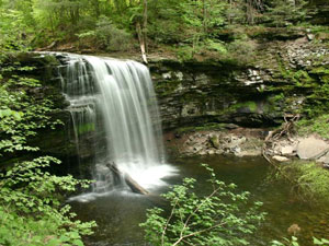 Ricketts Glen State Park - Harrison Wright Falls