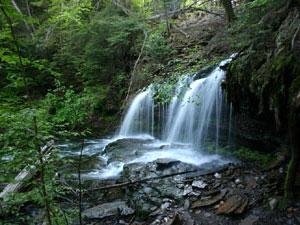 Ricketts Glen State Park - Mohawk Falls