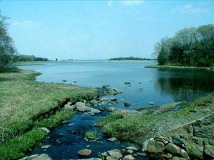 Chafee Nature Preserve