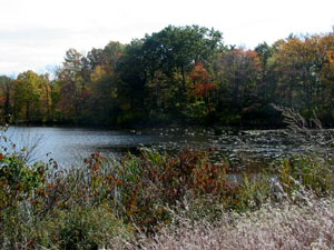 Rhode Island pond