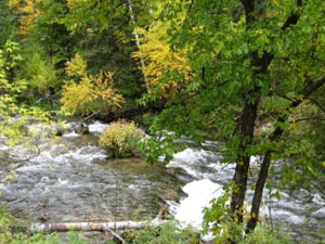 Spearfish Canyon - Spearfish Creek